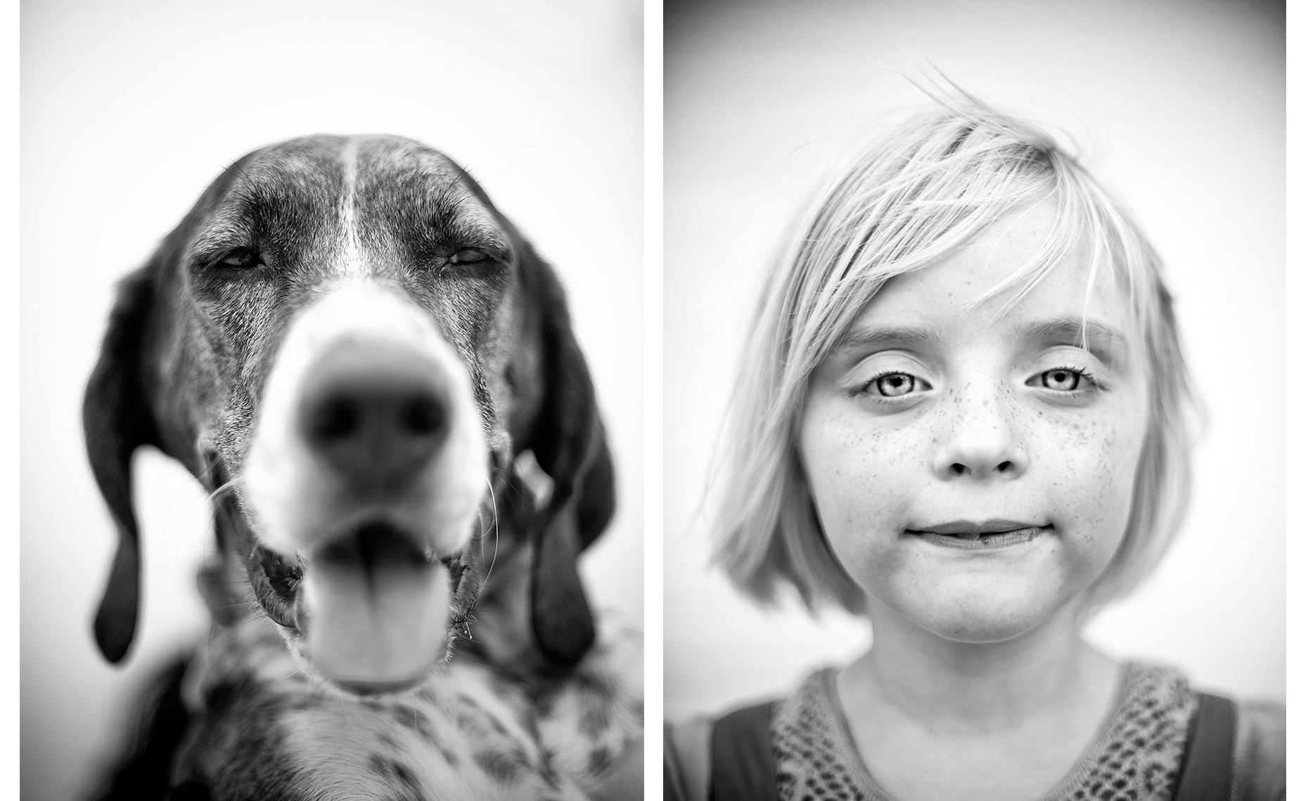 aaron-ingrao-diptych-portrait-dog